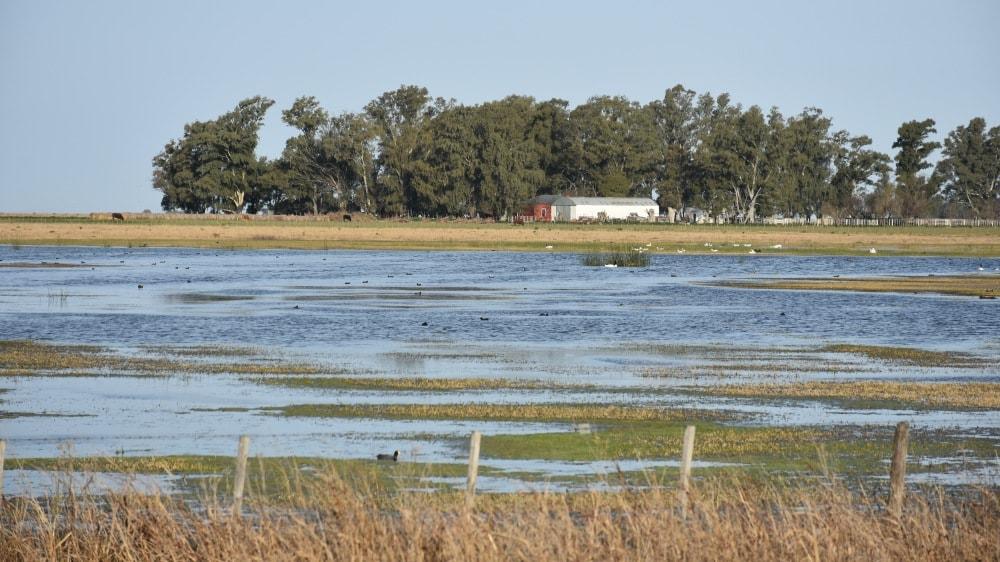 foto de inundaciones de campos