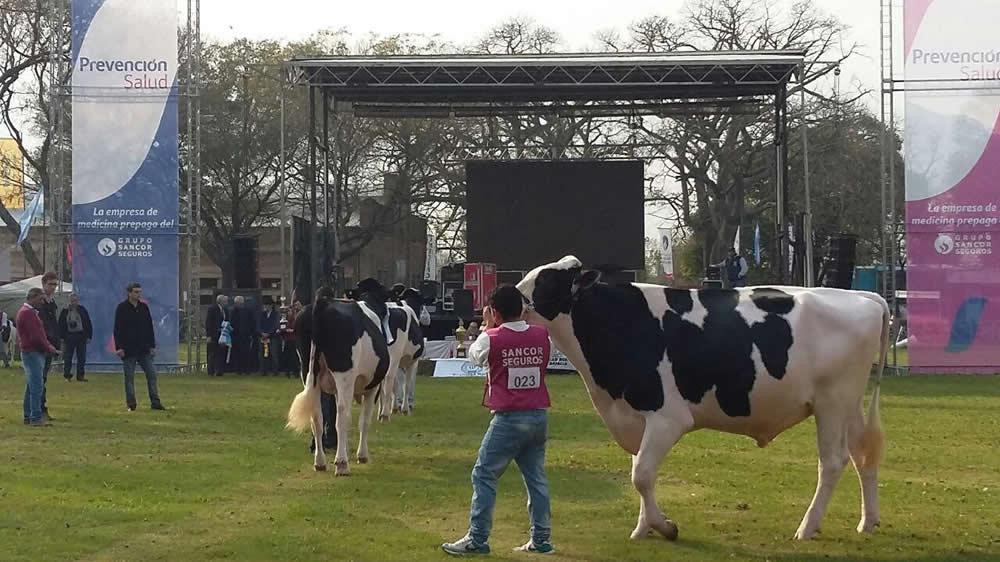 Expo en sociedad rural de Rafaela, Santa Fé