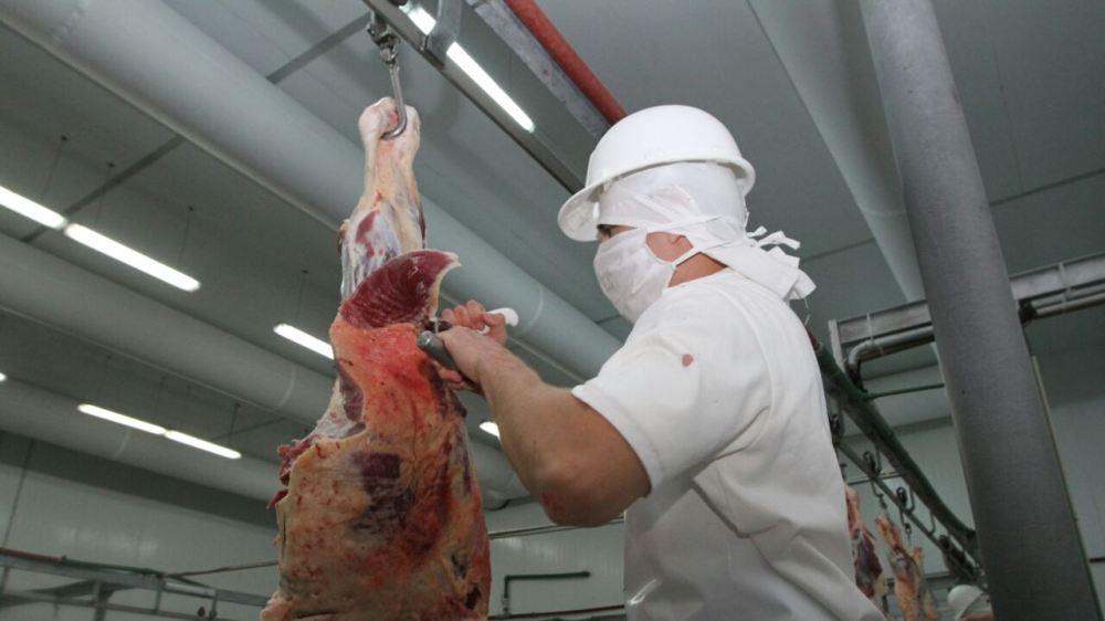 Foto de Carne de Exportación