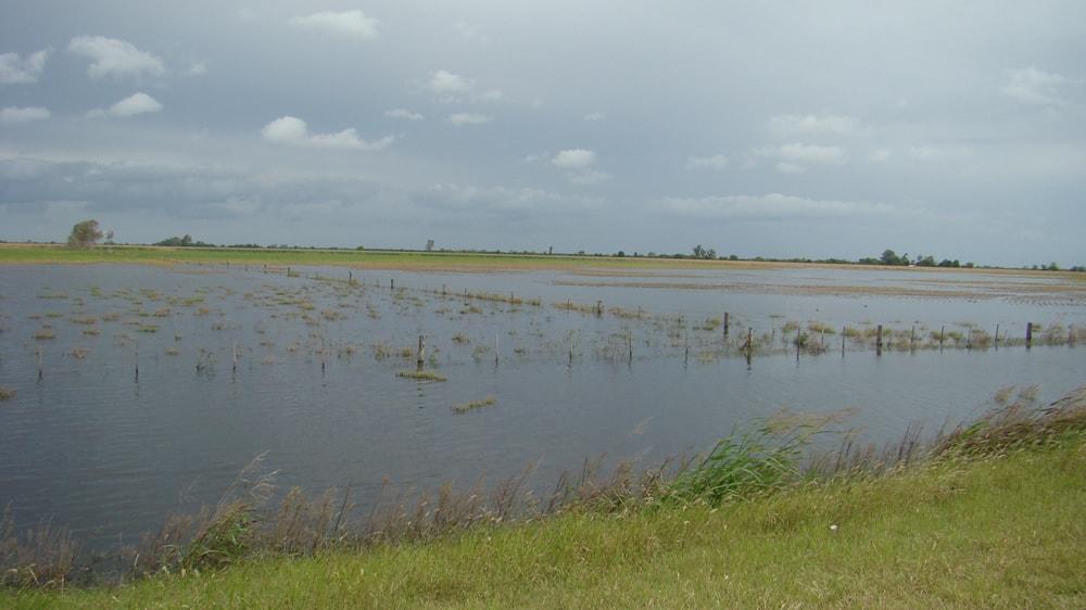 Campo inundado en Argentina
