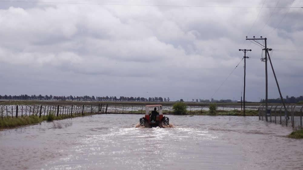Inundaciones en campos de la provincia de Buenos Aires