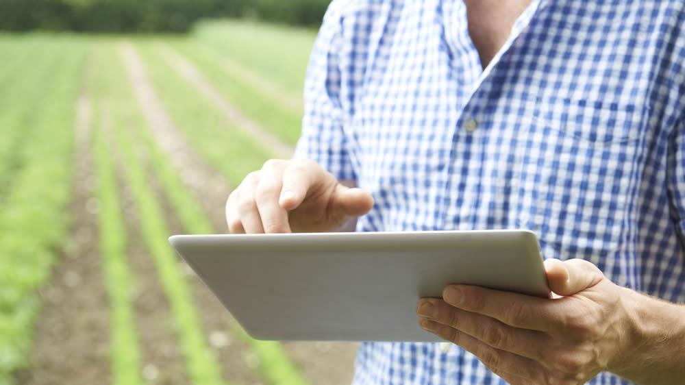 Productor agropecuario con tablet