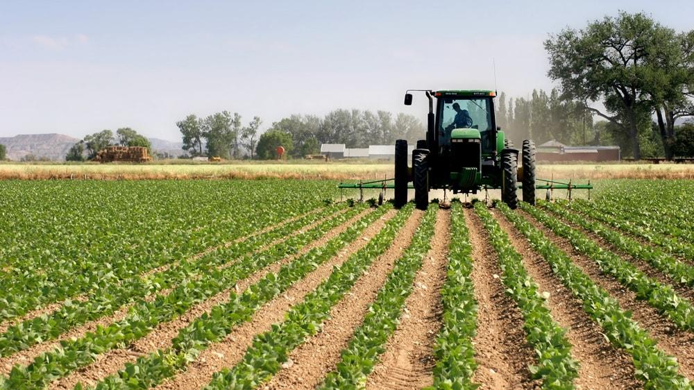 Productor agropecuario manejando tractor
