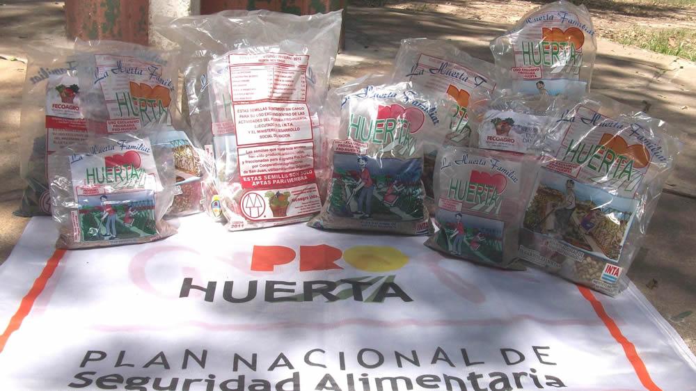 Semillas del programa Pro Huerta del INTA