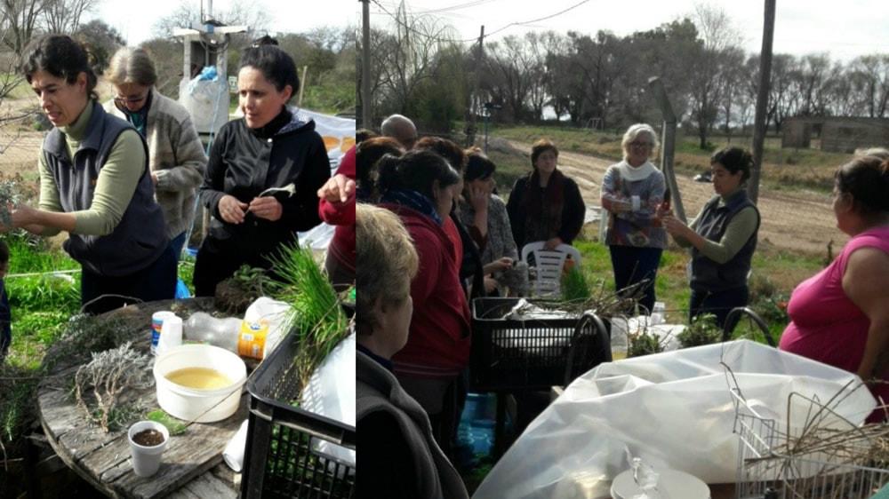 Taller de plantines del programa Pro Huerta del INTA