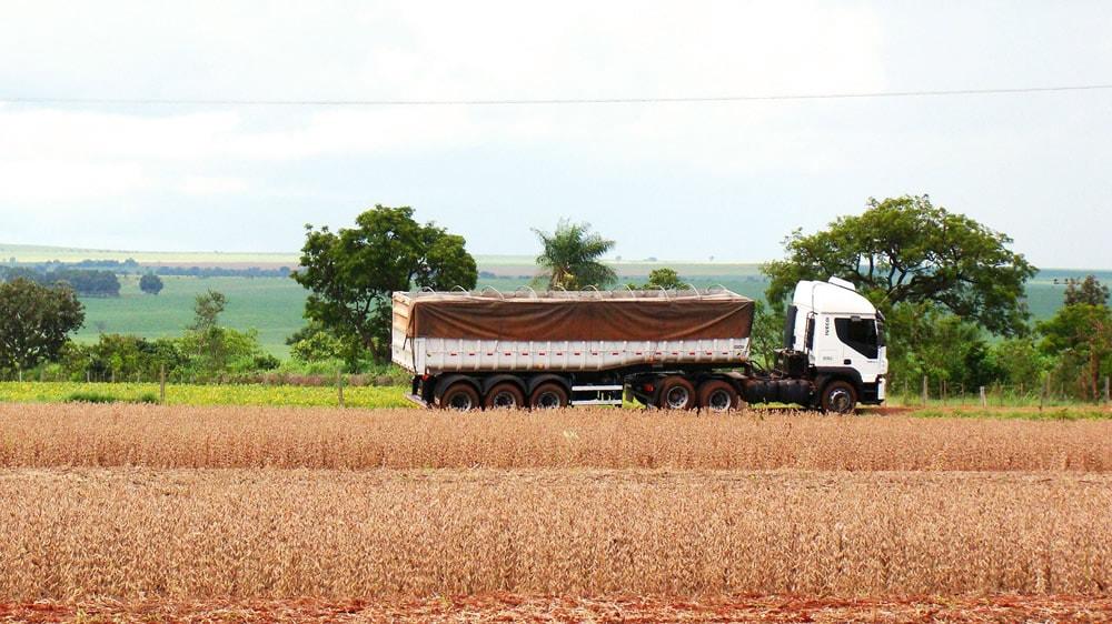 Camión transportador de cereales