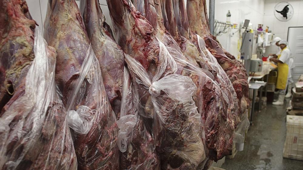 Carne con hueso para exportar