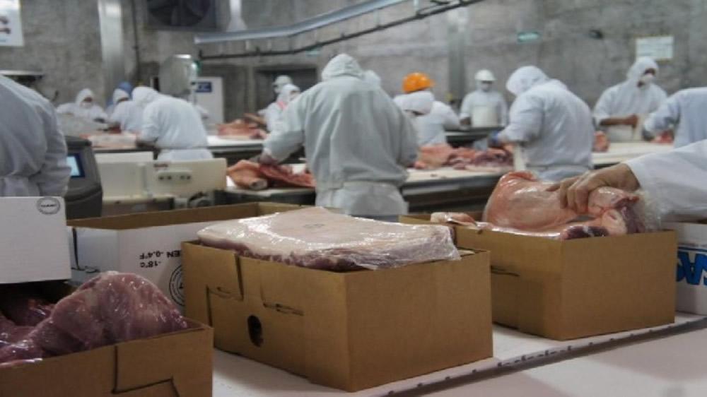 Exportación de carne de cerdo