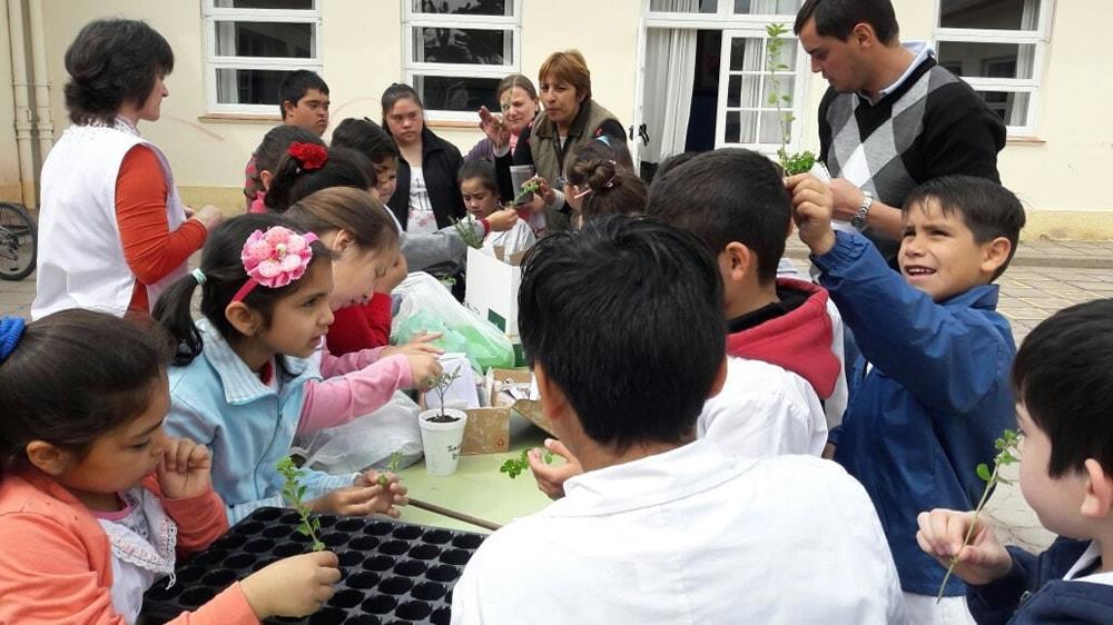 Niñas y niños de escuelas especiales realizando el taller de plantas aromáticas del INTA