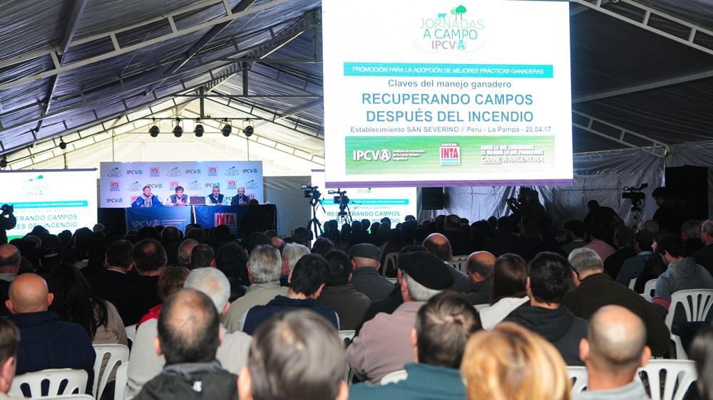 Jornadas a campo del IPCVA en La Pampa