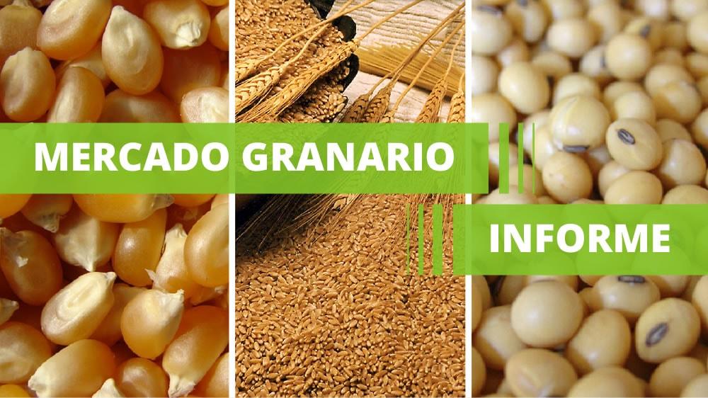 Mercado granario argentino Informe Bolsa de Comercio de Rosario