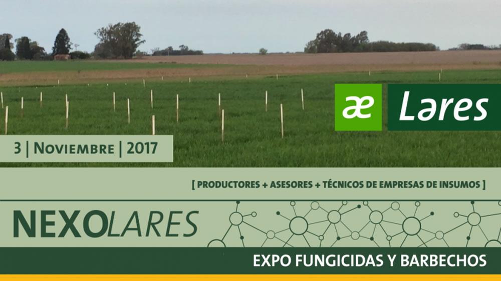 Nexo Lares: Expo Fungicidas y Barbechos