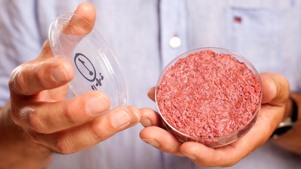 Carne sintética en probeta