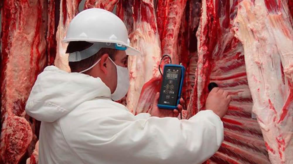 Controlando la carne en frigorífico