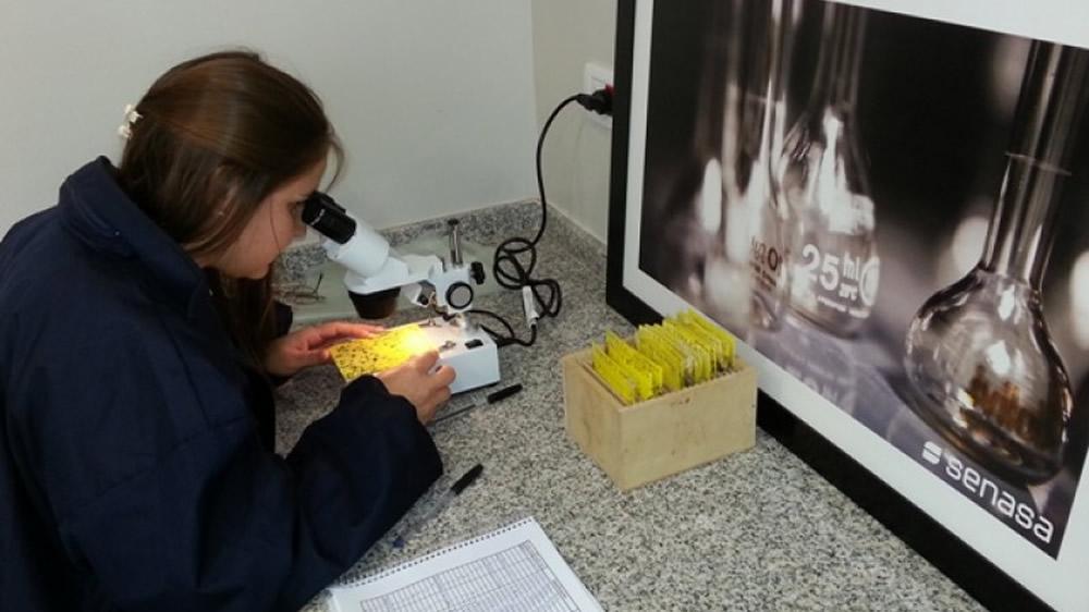 Inscripción del primer Laboratorio Regional Fitosanitario en la Red Nacional