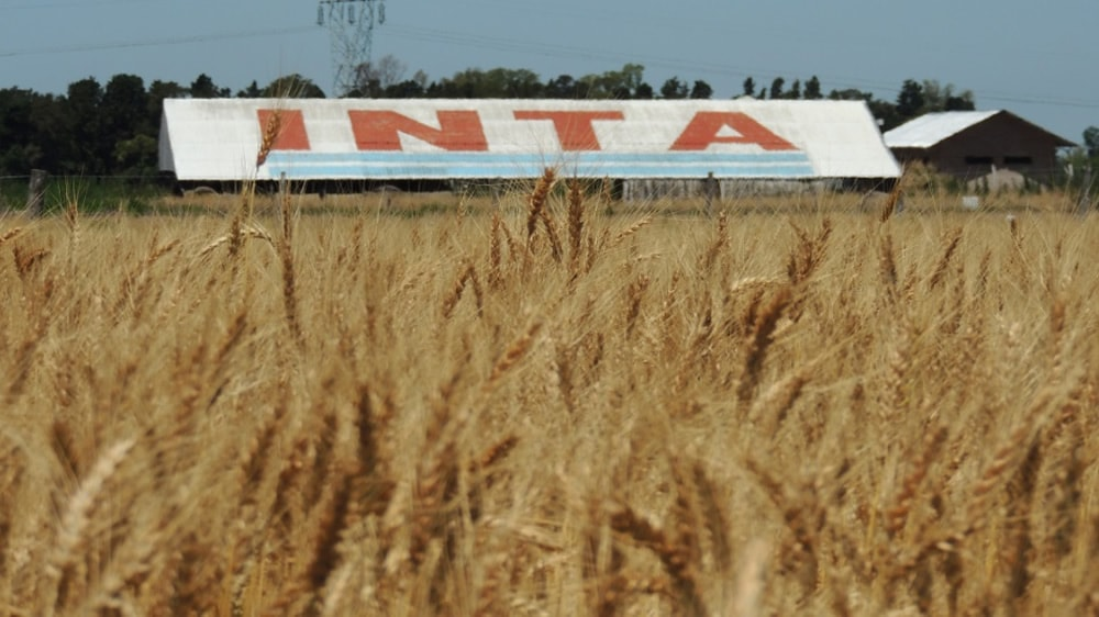 Los trabajadores del INTA lanzaron una campaña en la web para expresar su temor por los posibles despidos