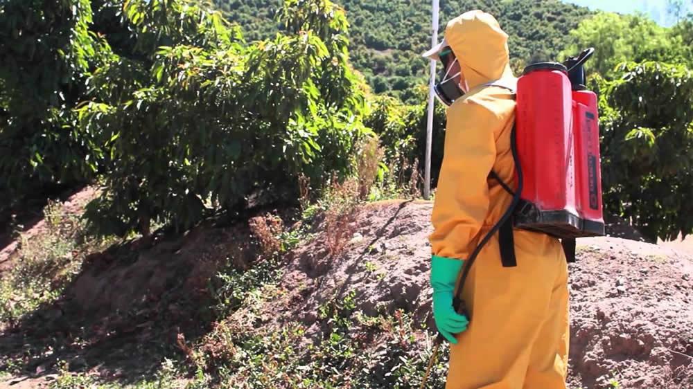 Uso eficiente y responsable de fitosanitarios con mochilas pulverizadoras manuales