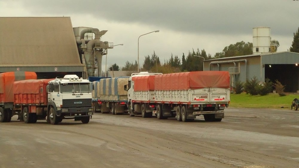 Camiones transportando granos