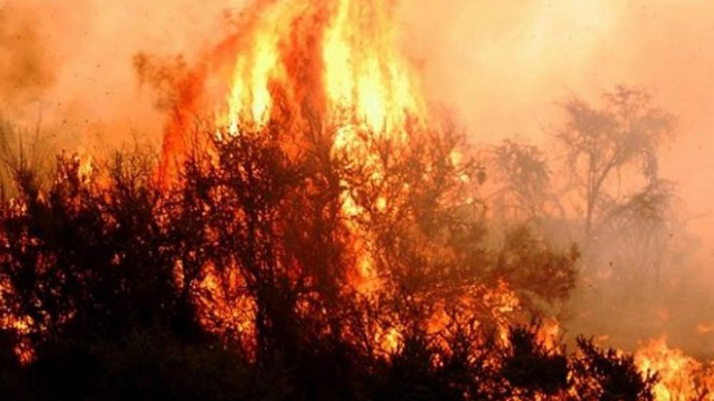 Incendio en Lihue Calel
