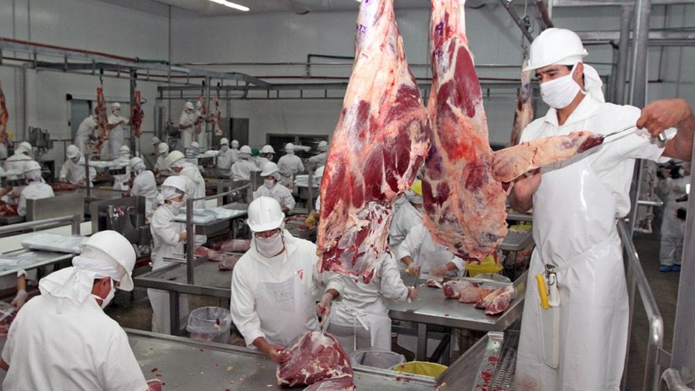 Operarios trabajando en frigorífico
