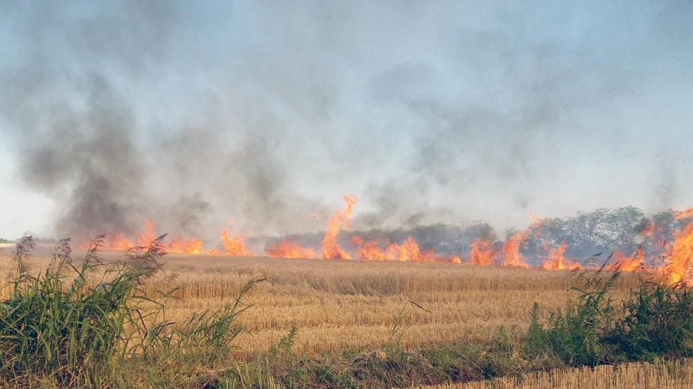 Incendio en el campo