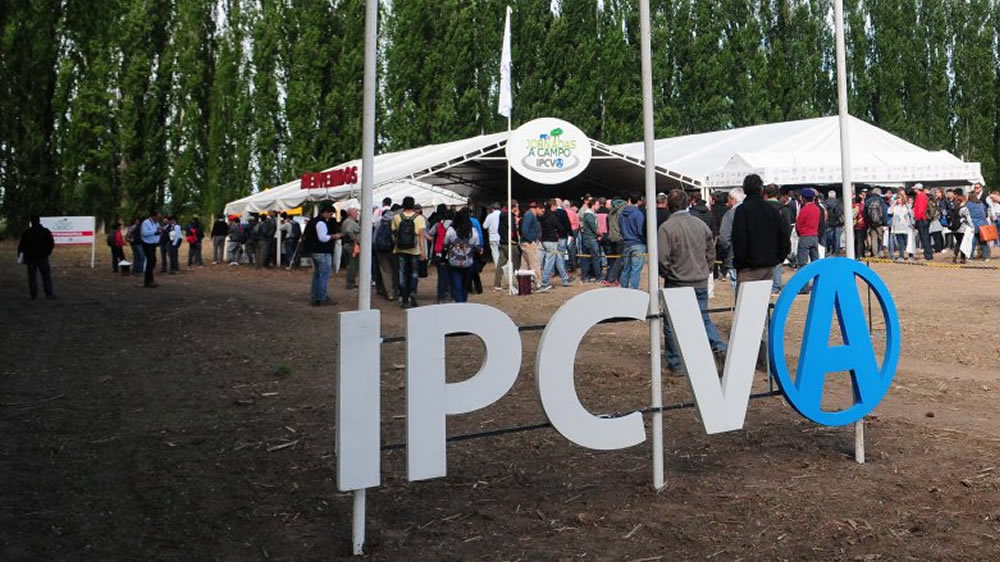 IPCVA Jornada