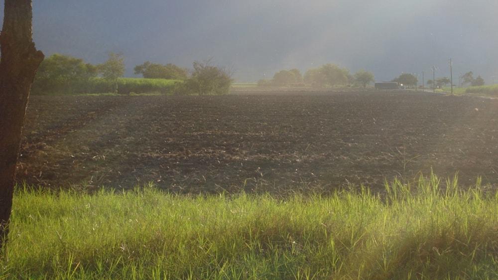 Humedad en el campo