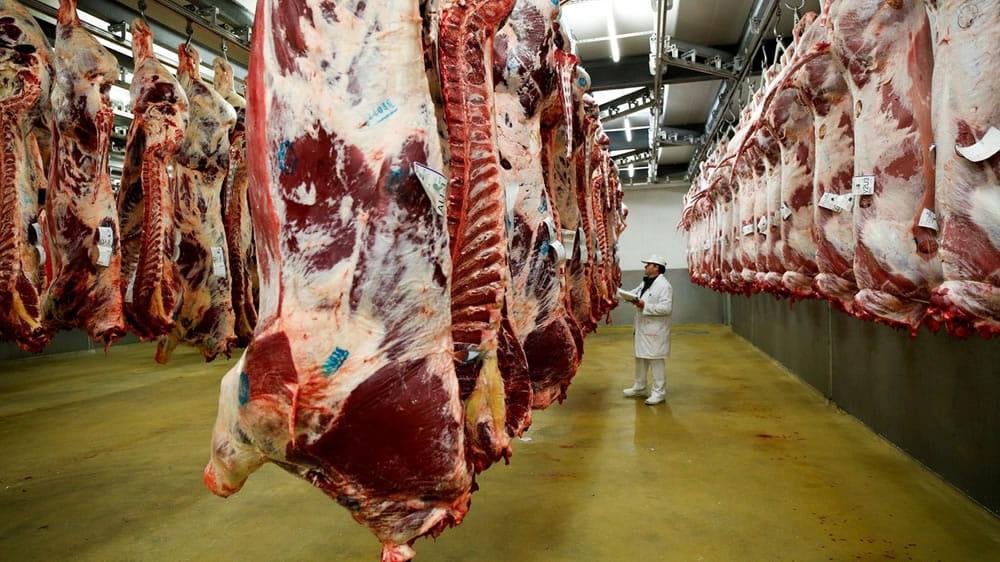 """Los nuevos """"ROE"""": ya rige el nuevo registro para exportar carne"""