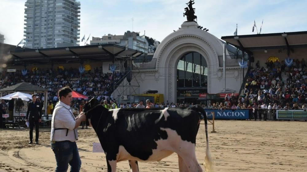 Efecto coronavirus: por segundo año consecutivo se suspendió la Rural de Palermo