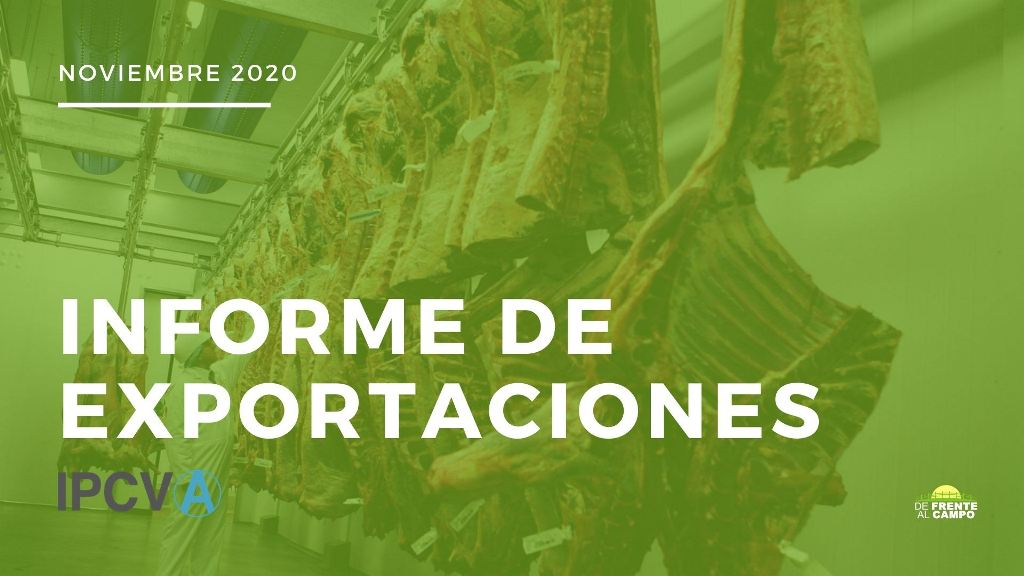 Exportaciones de noviembre de 2020