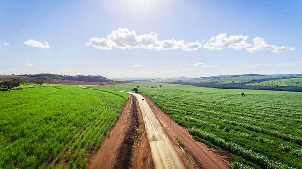 Estiman que los campos naturales siguen produciendo menos