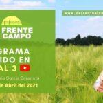 DFC en Canal 3 / Vivo: Lunes 5 / Abril / 2021