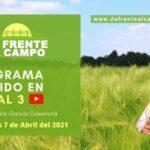 DFC en Canal 3 / Vivo: Miércoles 7 / Abril / 2021